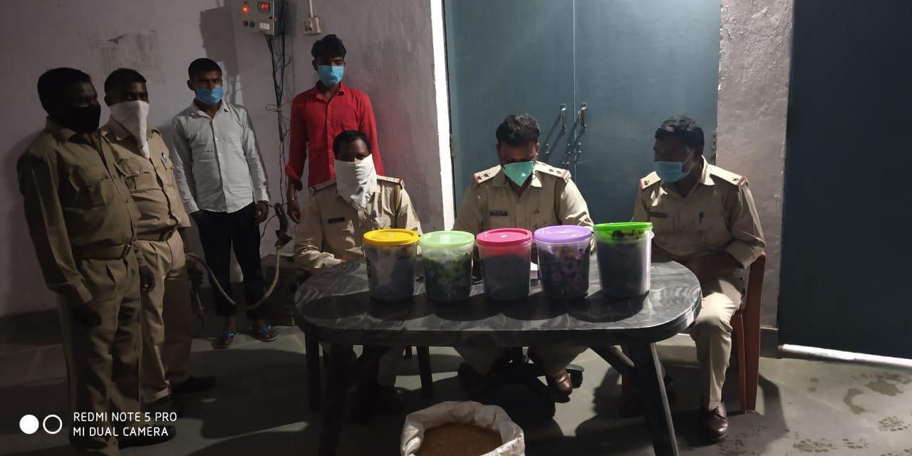 चौपारण पुलिस ने 20 किलो अफीम के साथ दो तस्कर गिरफ्तार किया